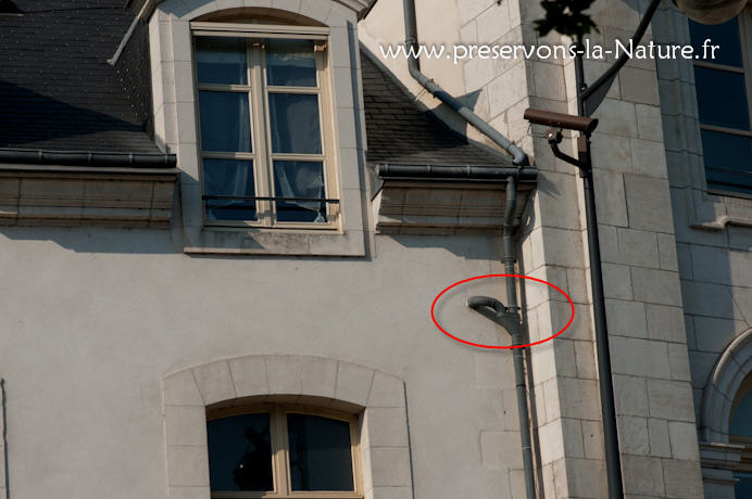 Un autre sur le même immeuble...