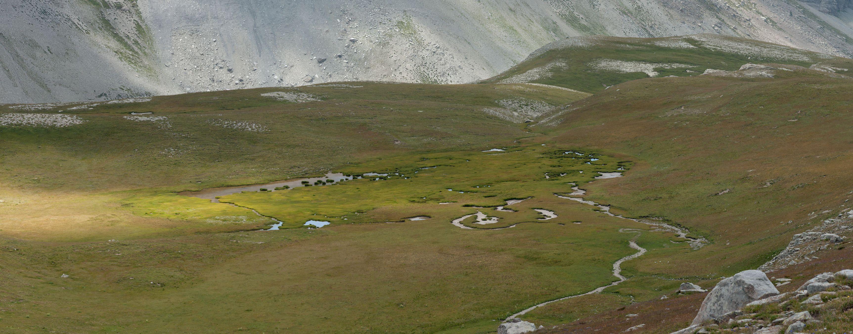 Une tourbière dans le vallon de l'Estrop