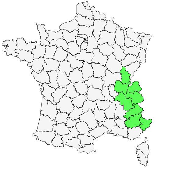 Répartition de Eryngium alpinum L. ( Panicaut des Alpes )