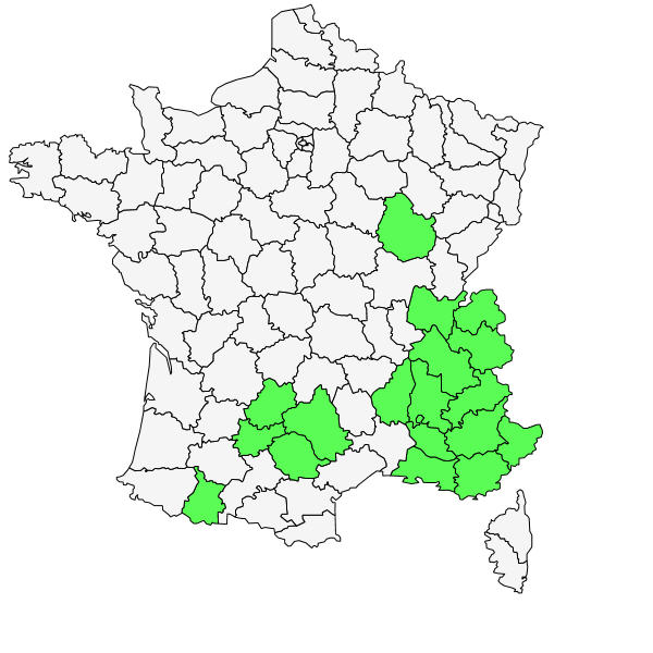 Répartition de Laserpitium gallicum L. ( Laser de France )