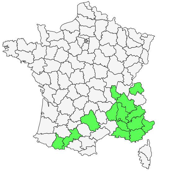 Répartition de Cirsium monspessulanum (L.) Hill ( Cirse de Montpellier  )
