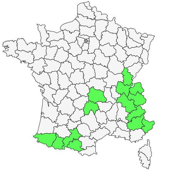 Répartition de Soldanella alpina L. ( Soldanelle des Alpes  )