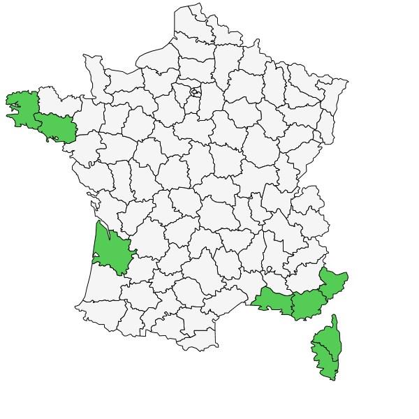 Répartition de Triglochin barrelieri Loisel. ( Troscart de Barrelier )